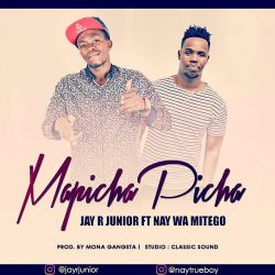 Jay R Junior Ft Nay Wa Mitego - Mapicha