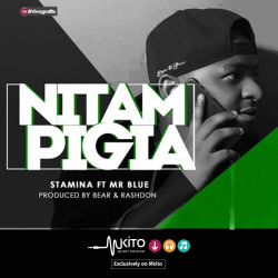 Stamina - Nitampigia