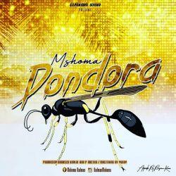 Mshoma - MSHOMA _DONDORA