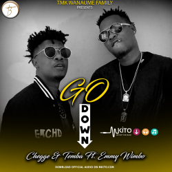 Chege & Temba - Go Down Ft. Emmy Wimbo