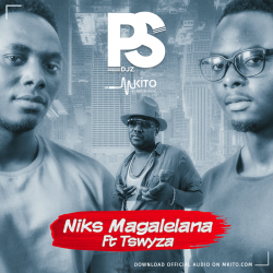 PS DJz - Niks Magalelana Ft. Tswyza
