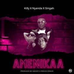 Divathebawse - Amenikaa (ft. Killy x Nyanda x Singah)