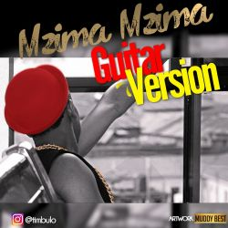 Timbulo - mzimamzima guitar varsion