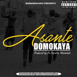 Domokaya - Asante