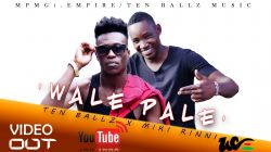 Ten Ballz - WALE PALE