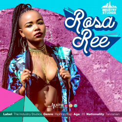 The Industry - Up In The Air (Clean) - Rosa Ree
