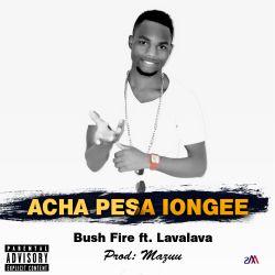 Bush Fire - Acha pesa iongee