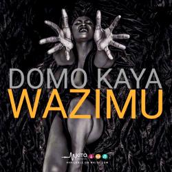 Domokaya -  Wazimu