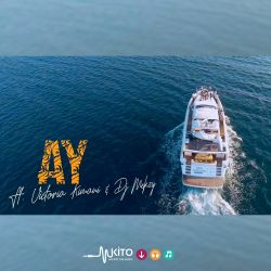 AY - Loving You Ft Victoria Kimani & Dj Mekzy