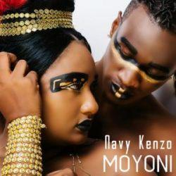 Navy Kenzo - Moyoni