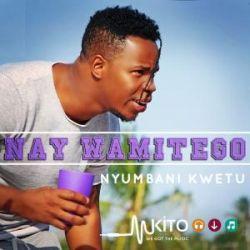 Nay Wa Mitego - Nyumbani Kwetu