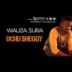 Ochu Sheggy - Wauza Sura