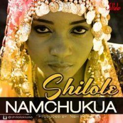 Shilole - Namchukua