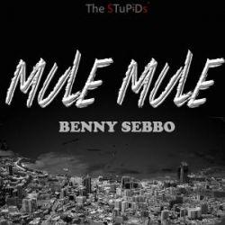 Mule Mule