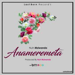 Nuh Mziwanda - Anameremeta