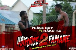 chasu boy - PEACE BOY FT HAKU TZ