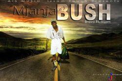 BRAVO - mjanja wa bush