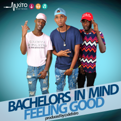Bachelors In Mind - Bachelors In Mind-Feeling (NOIZ)