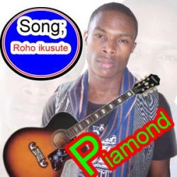 Piamond - Roho Ikusute