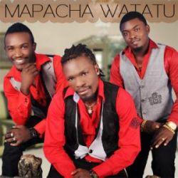 Mapacha Watatu - Nyumba ndogo