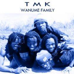 TMK Wanaume Family - Haitoshi Ft. Chidi Benz