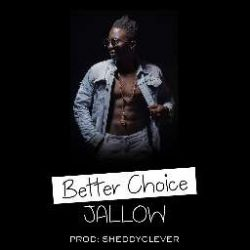 jallowb1 - betterchoice1