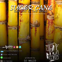 Stone Town Records Music - Suger Cane