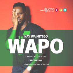 Nay Wa Mitego - Wapo