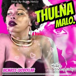 Vicmass Luodollar - Thulna Malo (clean)