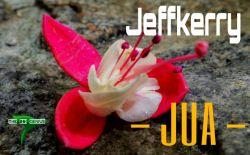 Jeffkerry  - Jua