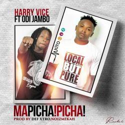 Mapicha Picha ft OdiiJambo